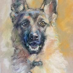 2018-Hund-6